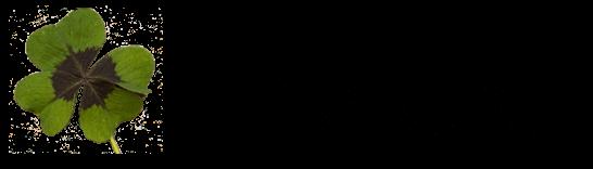 yokakusa